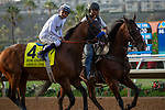 """DEL MAR, CA  JULY 28: #4 American Anthem, ridden by Mike Smith, in the post parade of the Bing Crosby Stakes (Grade l) Breeders' Cup """"Win and You're In Sprint Division"""" on July 28, 2018 at  Del Mar Thoroughbred Club in Del Mar, CA. (Photo by Casey Phillips/Eclipse Sportswire/Getty Images)"""