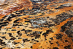 Patterns of color decorate the flats of Daisey Geyser,  Yellowstone National Park, the first National Park in the world, still enthrals over three million visitors a year with it's geothermal features,wildlife,  rugged mountains, deep canyons and stunning ecosystem.