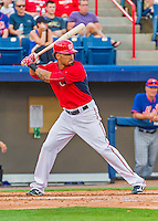 5 March 2015: Washington Nationals shortstop Ian Desmond at bat during a Spring Training game against the New York Mets at Space Coast Stadium in Viera, Florida. The Nationals rallied to defeat the Mets 5-4 in their Grapefruit League home opening game. Mandatory Credit: Ed Wolfstein Photo *** RAW (NEF) Image File Available ***