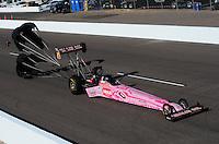 Oct. 15, 2011; Chandler, AZ, USA; NHRA top fuel dragster driver Terry McMillen during qualifying at the Arizona Nationals at Firebird International Raceway. Mandatory Credit: Mark J. Rebilas-