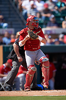 Florida Southern Moccasins catcher Evan Barnes (39) throws the ball back to the pitcher during an exhibition game against the Detroit Tigers on February 29, 2016 at Joker Marchant Stadium in Lakeland, Florida.  Detroit defeated Florida Southern 7-2.  (Mike Janes/Four Seam Images)