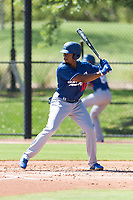 Los Angeles Dodgers outfielder Daniel Robinson (16) at bat during an Instructional League game against the Oakland Athletics at Camelback Ranch on September 27, 2018 in Glendale, Arizona. (Zachary Lucy/Four Seam Images)
