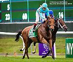 ELMONT, NY - OCTOBER 08: Irad Ortiz Jr, atop Lady Eli #5, celebrating after winning the 39th Running of The Flower Bowl, on Jockey Club Gold Cup Day at Belmont Park on October 8, 2016 in Elmont, New York. (Photo by Douglas DeFelice/Eclipse Sportswire/Getty Images)