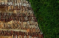 """Santarém Pará 16-06-2007- Pátio de madeireira na cidade de santearem, desmatamento ilegal na Amazonia Brasileira. A série """"Uma certa Amazônia"""" realizada durante a primeira década do século  21, quando os eventos extremos de cheia e vazante na Amazônia revelaram que algo de muito errado está acontecendo com o clima do planeta. Mudanças cada vez mais drásticas no regime das águas da bacia dos rios Negro e Solimões provocaram impactos como a fome, sede, doenças e mortandade de animais. O cotidiano das populações tradicionais e a paisagem amazônica mudaram definitivamente. Uma situação de extremos, onde as vazantes estão, a cada ano, se transformando em catástrofes e as cheias mostrando-se cada vez mais trágicas. Este cenário que a cada vez mais perde áreas de florestas para o agronégocio, principalmente  as plantações de soja e milho, assim como a criação de gado, além da pressão sofrida pela industria madereira em áreas de preservação permanente e também em terras indígenas, além  da exploração mineral e a ameaça pelas grandes obras de infra-estrutura do governo brasileiro fazem da Amazônia um dos ecossistemas mais frágeis perante a ação do homem."""