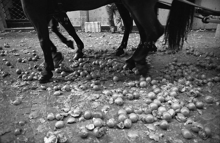 Storico Carnevale di Ivrea, Battaglia delle Arance --- Historic Carnival of Ivrea, Battle of the Oranges