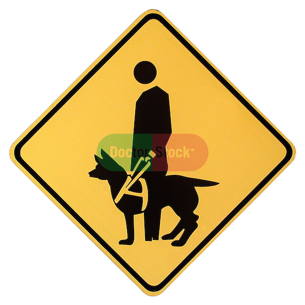 sign urging caution for crossing blind person with seeing eye dog on shadowless white background