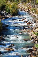 Rushing waters of Edith Clavel Creek Jasper National Park