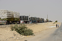 EGYPT, Farafra, truck transport potatos and hay from desert farms for export / AEGYPTEN, Farafra, LKW transportiert Kartoffeln und Heu von Wuestenfarmen fuer den Export