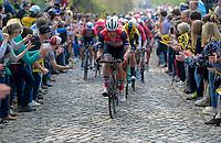 Jasper STUYVEN (BEL/Trek-Segafredo) up the Taaienberg<br /> <br /> 103rd Ronde van Vlaanderen 2019<br /> One day race from Antwerp to Oudenaarde (BEL/270km)<br /> <br /> ©kramon