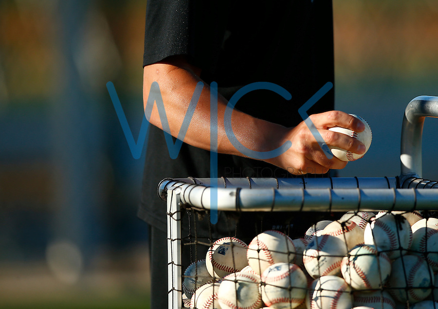 A bag of balls is shown during spring training at Pirate City in Bradenton, Florida on February 17, 2016. (Photo by Jared Wickerham / DKPS)