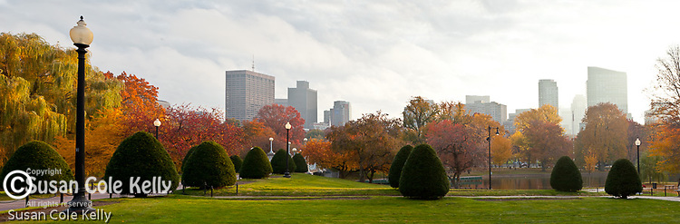 Fall foliage in the Public Garden, Boston, MA, USA