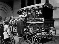 Tacking up U.S. Food Administration posters at Mobile, Alabama, Ca.  1918.  Erik Overbey.  (War Dept.)<br />Exact Date Shot Unknown<br />NARA FILE #:  165-WW-169B-4<br />WAR & CONFLICT BOOK #:  566
