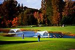 Golf in fall on public course in Kent, Washington near Seattle.