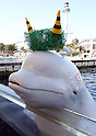 White Beluga joins Setsubun festival