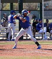 Kevonte Mitchell - Chicago Cubs 2019 spring training (Bill Mitchell)