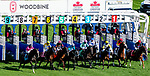 September 18, 2021: Scenes from Woodbine Mile Day at Woodbine Racetrack in Toronto, Ontario Canada on September 18th, 2021. Scott Serio/Eclipse Sportswire/CSM