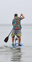 BNPS.co.uk (01202 558833)<br /> Pic: ZacharyCulpin/BNPS<br /> <br /> Pictured: A colourful competitor with his obedient pooch.<br /> <br /> Putting their best paw forward hoping to ride the wave of success - Competitors and their dogs take part in the annual Dog Surfing championships.<br /> <br /> The event known as The 'dogmasters' took place today on Bournemouth beach in front of packed crowd, it's the country's only dog surfing and paddleboard championship.