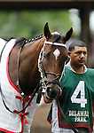 July 21, 2012  Daring Reality walks in the paddock before competing in the Delaware Handicap at Delaware Park, Stanton, DE. She finished fifth in the race, which was won by Royal Delta. ©Joan Fairman Kanes/Eclipse Sportswire