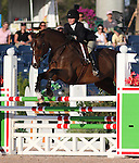 WELLINGTON, Fla., Mar. 13 - Schaefer Raposa of Wellington, Fla., and Radscha A.W. place fourth in the George H. Morris Excellence in Equitation Friday at the Palm Beach International Equestrian Center...Jessica Springsteen rode Papillon 136 to win the show, held before the entire 2008 USA Olympic gold medal team that judged the event...A crowd estimated at about 1,000 spectators and another 1,000 on a live Internet telecast watched the junior riders who qualified throughout the FTI Winter Equestrian Festival for the second annual competition named for the captain of Team USA jumping and who has written his own best selling author on equitation...Springsteen, of Colt's Neck, N.J., and the gelding on which she also won the 2008 Maclay Championship led from the first of two rounds of the George Morris title and triumphed in the Final Four rideoff...Victoria Birdsall, of Topsfield, Mass. on Cheyenne, placed second, and Taylor Marie Harris of Grant's Pass, Ore., and Sundance placed third...Photo by Bob Markey II
