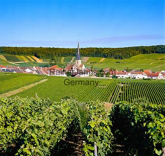 France, Département Marne, Champagne, Villers-aux-Nœuds: wine village   Frankreich, Département Marne, Champagne, Villers-aux-Nœuds: Weindorf