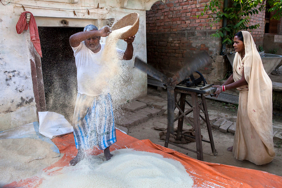 A husband and wife team winnows rice manually, in Subudha, India.