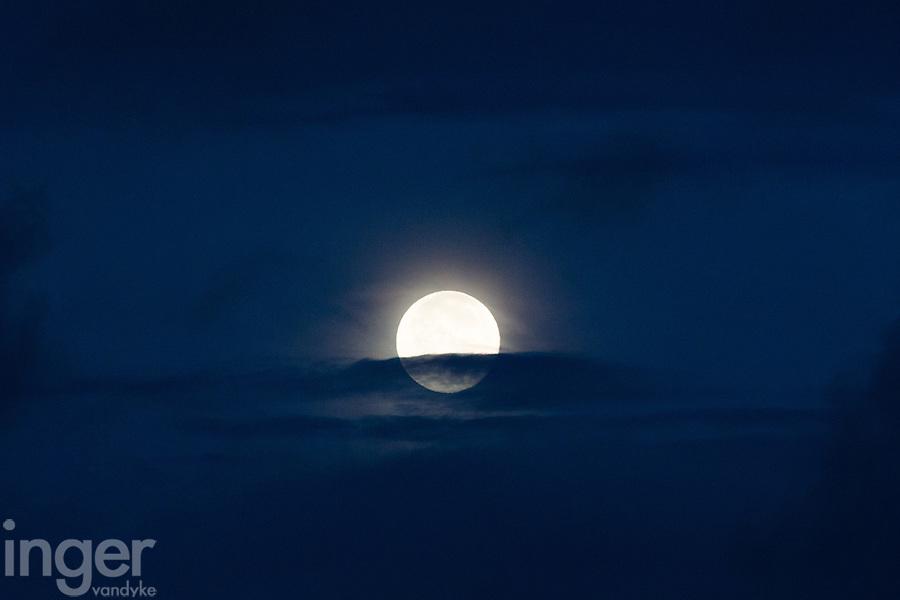Full Moon at Bosque del Apache