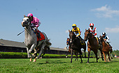7th - Hall of Fame Stakes - Public Sector