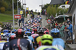 The peloton during the Tour of Flanders 2020 running 244km from Antwerp to Oudenaarde, Belgium. 18th October 2020.  <br /> Picture: Bora-Hansgrohe/Nico Vereecken/PN/BettiniPhoto   Cyclefile<br /> <br /> All photos usage must carry mandatory copyright credit (© Cyclefile   Bora-Hansgrohe/Nico Vereecken/PN/BettiniPhoto)