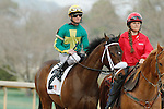 #2 Taris (KY) with jockey Clinton L. Potts aboard during post parade of the running of the Honeybee Stakes (Grade III) at Oaklawn Park in Hot Springs, Arkansas-USA on March 8, 2014. (Credit Image: © Justin Manning/Eclipse/ZUMAPRESS.com)