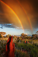 Halls Creek and surrounding area where termites have most of their activity during the wet. Two rainbows are a dramatic backdrop to the landscape.