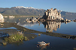 Mono Lake Tufa State Reserve in morning Mono Lake State Reserve