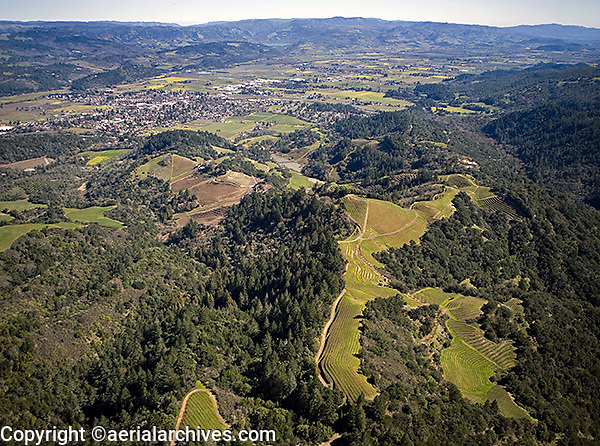 aerial photograph Napa Valley vineyards Napa County, California