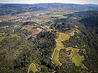 aerial photograph Napa Valley vineyards Napa County, California