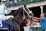 LOUISVILLE, KY - OCT 01: Tom's Ready (#3, Brian Hernadez Jr.) wins the 24th running of the G3 Ack Ack Stakes at Churchill Downs, Louisville, KY. Owner G.M.B. Racing, trainer Dallas Stewart.<br />  (Photo by Mary M. Meek/Eclipse Sportswire/Getty Images)