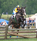 6th Mason Houghland Timber Stakes - Lion's Double