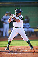Chicago State Cougars first baseman Rick Salazar (22) at bat during a game against the Georgetown Hoyas on March 3, 2017 at North Charlotte Regional Park in Port Charlotte, Florida.  Georgetown defeated Chicago State 11-0.  (Mike Janes/Four Seam Images)