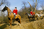 The Vale of White Horse an English premier hunt based in Wiltshire. Hunting with hounds. 1980s  The Master MFH in the front.