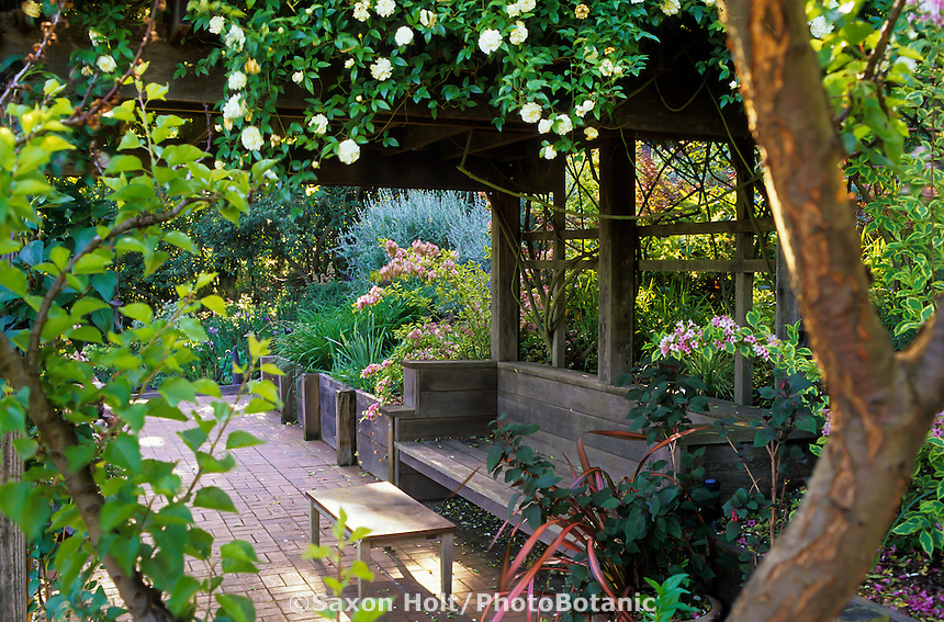 Brick path under vine covered gazebo, pergola with bench in Simpson Garden. Plant Design by Suzanne Porter.