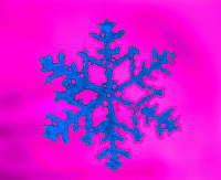 Snowflake Christmas ornament. Winter. Computer colorized photograph.