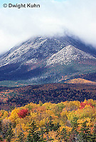 BX01-006z  Forest - Baxter State Park, Maine, Katahdin Mountain Range