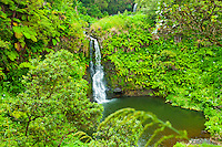 A waterfall surrounded by lush foliage as viewed from an overlook in Waipi'o Valley, Big Island.