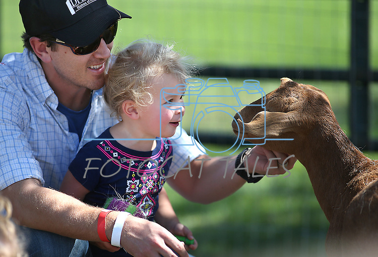 Daniel DiLoreto and his daughter Abigail, 2, pet goats at the second annual Basque Fry in Gardnerville, Nev., on Saturday, Aug. 20, 2016. The Republican rally and Basque-themed barbeque attracts people from around the state. Cathleen Allison/Las Vegas Review-Journal