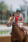 September 27 2014: Conquest Panthera with Mike Smith up after the FrontRunner Stakes at Santa Anita Park in Arcadia CA. Alex Evers/ESW/CSM