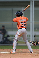 Outfielder Gregory Lorenzo (36) of the Baltimore Orioles organization during a minor league spring training game against the Minnesota Twins on March 20, 2014 at Buck O'Neil Complex in Sarasota, Florida.  (Mike Janes/Four Seam Images)