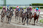 HALLANDALE BEACH, FL - December 09: Coltimus Prime, #8, with Irad Ortiz Jr. in the irons for the win in the Copa Invitacional for trainer Juan D. Arias at Gulfstream Park on December 9, 2017 in Hallandale Beach, FL. (Photo by Bob Aaron/Eclipse Sportswire/Getty Images.)