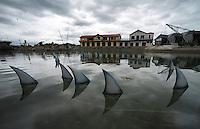 131205 Greenpeace - Shark Finning Petition