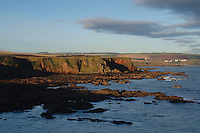 Killiedraught Bay on the Berwickshire Coastal Path, Scottish Borders<br /> <br /> Copyright www.scottishhorizons.co.uk/Keith Fergus 2011 All Rights Reserved
