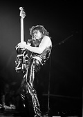 VAN HALEN, LIVE AND BACKSTAGE, 1979, NEIL ZLOZOWER