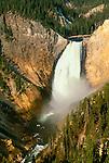 Yellowstone falls, Yellowstone National Park, Wyoming