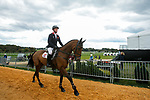 October 17, 2021: Oliver Townend (GBR), aboard Cooley Master Class, before competing during the Stadium Jumping Final at the 5* level g the Maryland Five-Star at the Fair Hill Special Event Zone in Fair Hill, Maryland on October 17, 2021. Jon Durr/Eclipse Sportswire/CSM